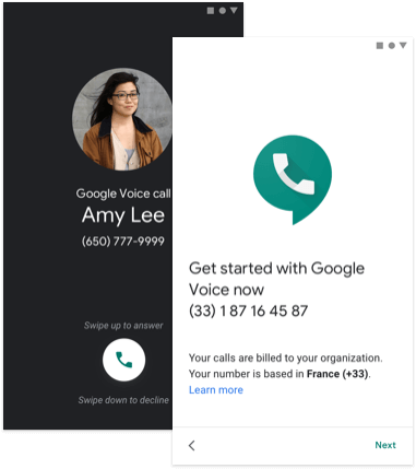 Google Voice Admin
